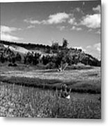 Legend Of The Bear Wyoming Devils Tower Panorama Bw Metal Print