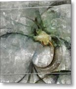 Lemniscatic Fancy  Id 16098-021154-72823 Metal Print