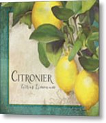 Lemon Tree - Citronier Citrus Limonum Metal Print