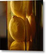 Lemon Vase Metal Print