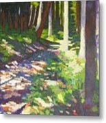 Lena Lake Trail I Metal Print