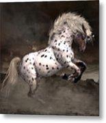 Leopard Appaloosa Shiloh Metal Print