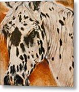 Leopard Appy Metal Print
