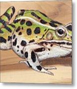 Leopard Frog No 1 Metal Print