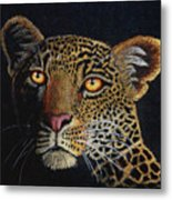 Leopard In The Dark Metal Print by Lorraine Foster
