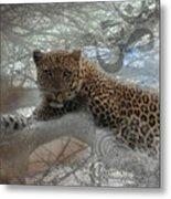 Leopard Tree Hugger Photo Collage Metal Print