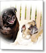 Leroy And Mrs. Jones Metal Print