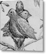 Les Trois Oiseaux Metal Print