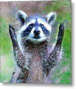 Let Me In I'm Rocky Raccoon Metal Print