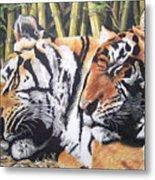 Let Sleeping Tigers Lie Metal Print