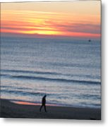 Let's Go For A Walk Metal Print