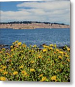 Let's Stop For Lunch Here Metal Print