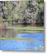 Lettuce Lake With Bridge Metal Print