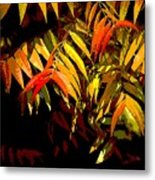 Library Leaves Metal Print