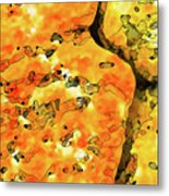 Lichen Abstract 2 Metal Print by ABeautifulSky Photography