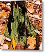 Lichen Castle In Autumn Leaves Metal Print