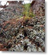 Lichen Tower Metal Print