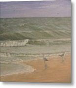 Life At The Sea Shore Metal Print