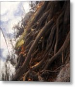 Life By The River Metal Print by David Lee Thompson