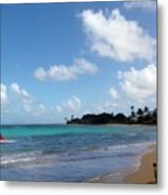 Life In The Country Hawaii Metal Print