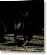 Life In The Shadows Metal Print