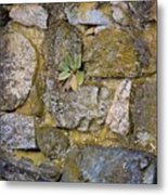 Life In The Wall Metal Print