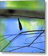 Life On The Edge Metal Print