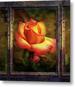 Life's Stages Metal Print