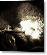 Light As He Tries To Sleep Metal Print