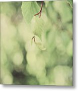 Light As The Air Metal Print