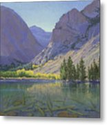 Light At Parker Lake Metal Print