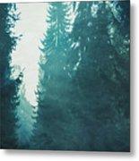 Light Coming Through Fir Trees In Mist Metal Print