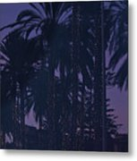 Light Decorated Palm Trees On Paseo Maritimo Metal Print