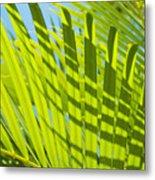 Light Green Palm Leaves Metal Print