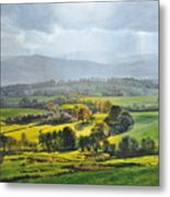 Light In The Valley At Rhug. Metal Print