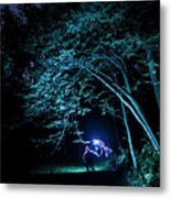 Light Painted Arched Tree  Metal Print