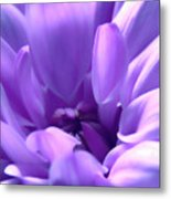 Light Purple Beauty Metal Print