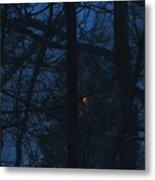 Light Through A Storm Metal Print