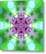 Lightmandala 6 Star 3 Metal Print