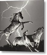 Lightning At Horse World Metal Print
