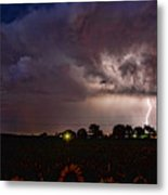 Lightning Stormy Weather Of Sunflowers Metal Print