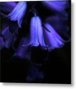 Bluebell Abyss Metal Print