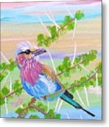 Lilac Breasted Roller In Thorn Tree Metal Print