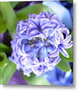 Lilac In Bloom Metal Print