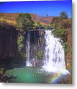 Lili Waterfall  Metal Print