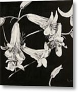 Lilies Black And White Metal Print