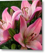 Lilies In Company Metal Print
