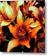 Lilies In The Shadow Metal Print
