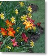 Lilies On Parade Metal Print