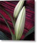 Lilies Paired On Red Brocade Metal Print
